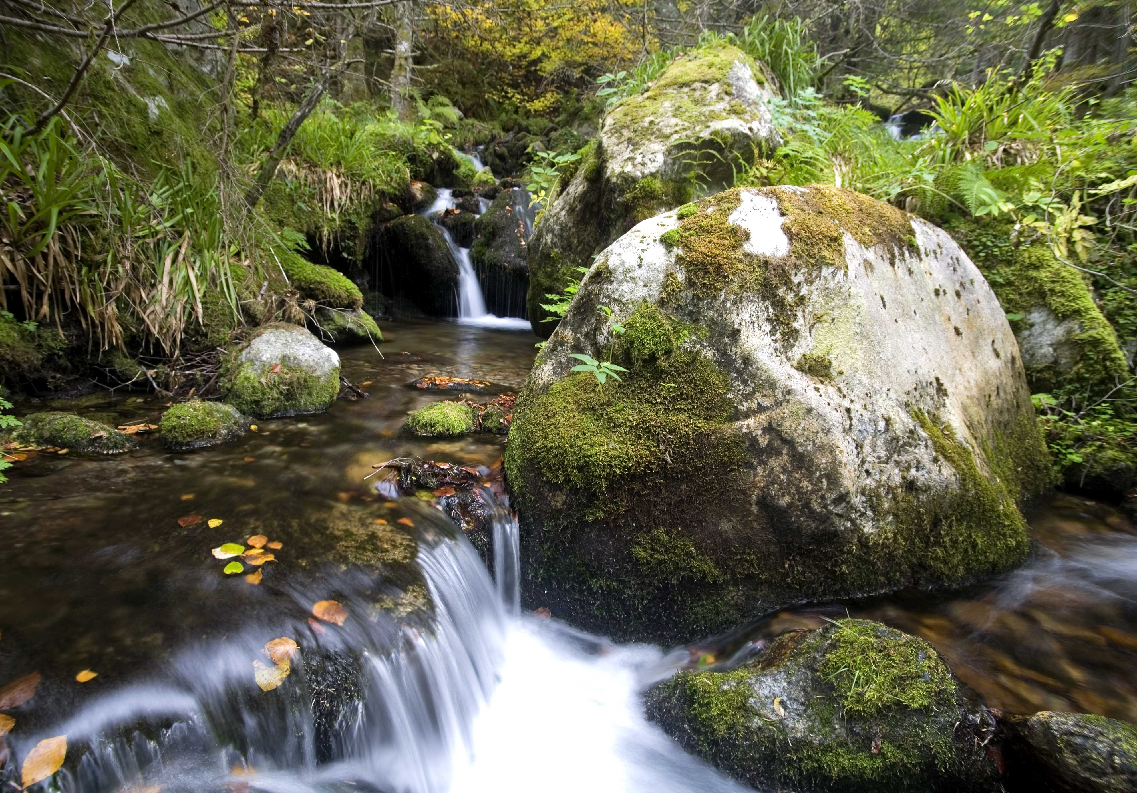 Waterfall Pyrenees France